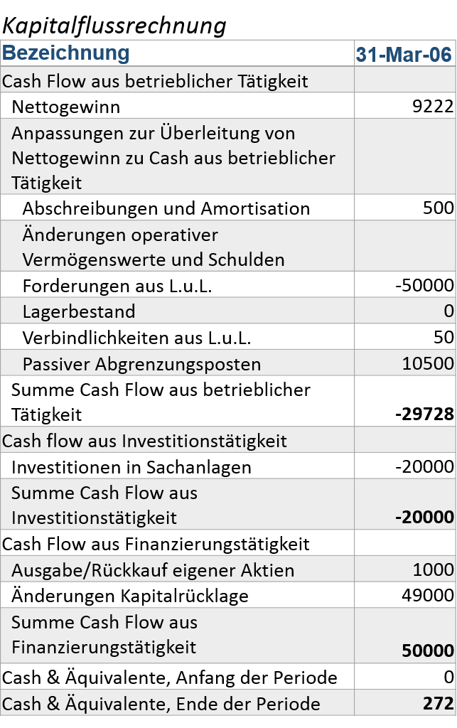 owner earnings vs free cash flow z-zone kapitalflussrechnung q1