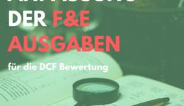 F&E Ausgaben