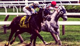 Unternehmen mit außergewöhnlich gutem Management (Jockey Stocks) finden