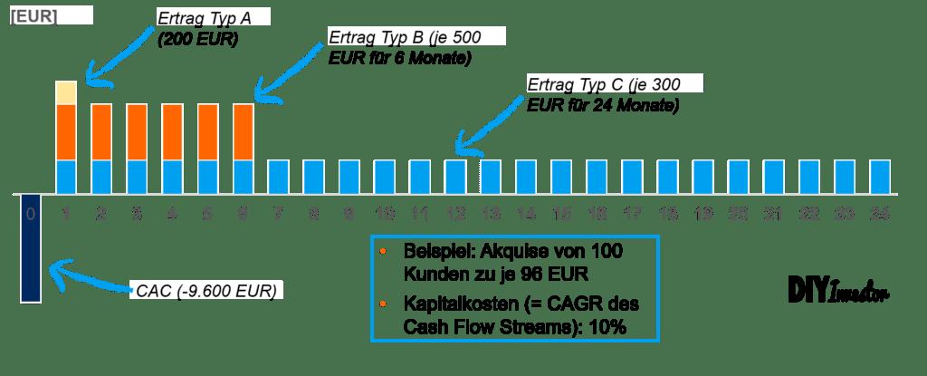 Cash Flow Profil zur Ermittlung des Customer Lifetime Value