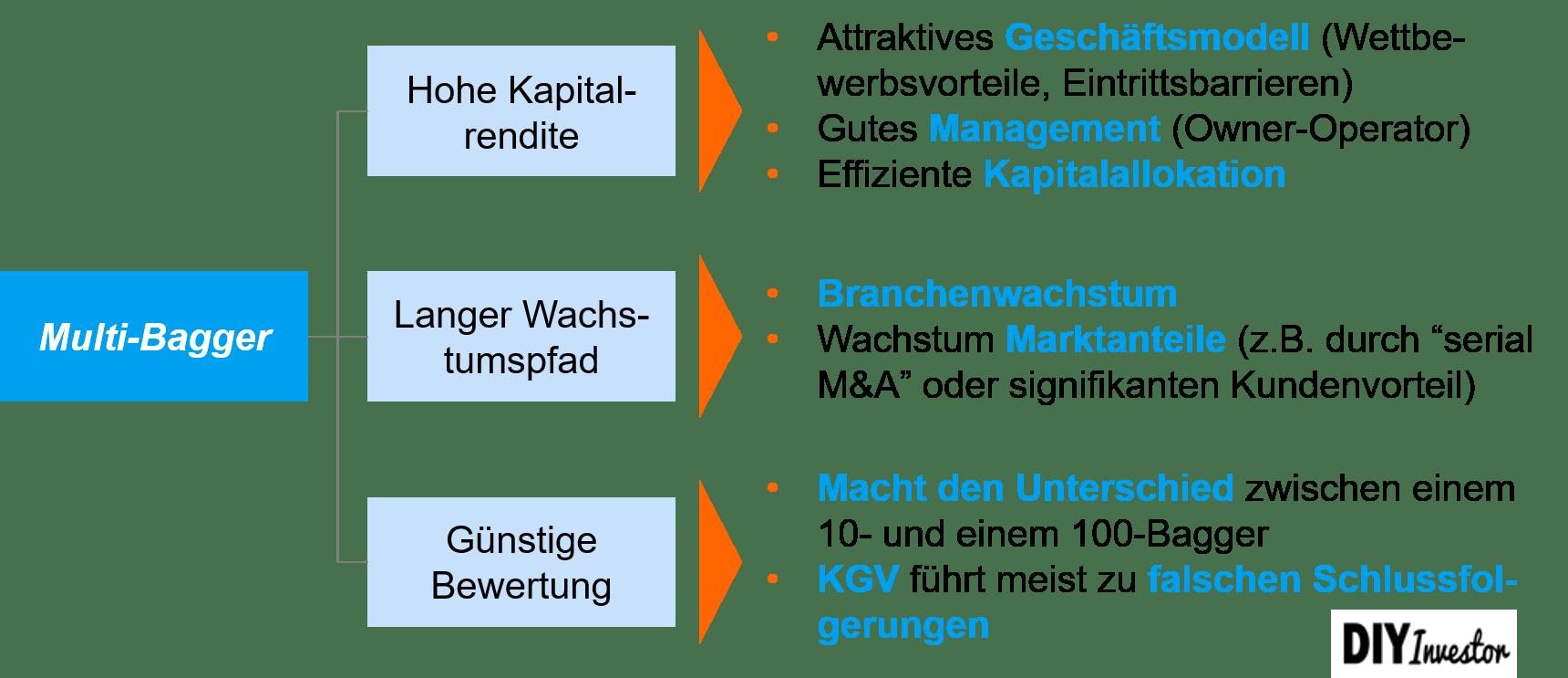 Multi-Bagger Erfolgskriterien