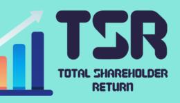 Total Shareholder Return (TSR): So funktioniert die Berechnung