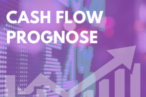 Cash Flow Prognose3