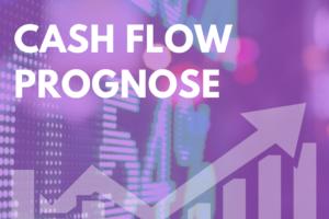 Cash Flow Prognose3